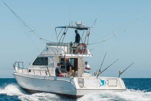 Морская рыбалка на средиземном море в Марбелье Испании Коста дель Соль