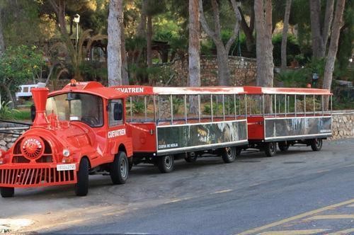 Экскурсионный туристический поезд Нерха