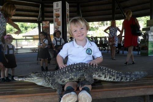 Парк крокодилов Торремолинос