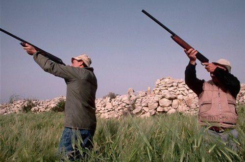 Охота на птиц в Испании